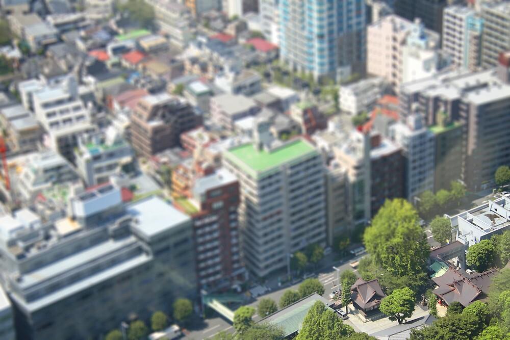 tokyo tiltshift by Signe Constable