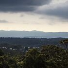 Looking West from John Hunter Hospital (2:5 panorama) by Daniel Rankmore