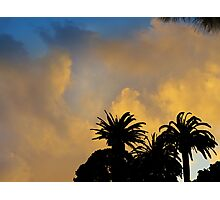 Dreaming of Maui Photographic Print