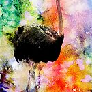 OSTRICH by Tammera