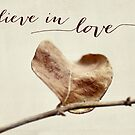 believe in love by beverlylefevre