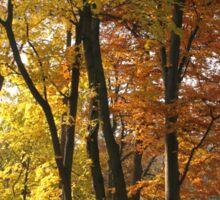 Autumn lane Sticker