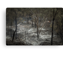 Controlled Burn Canvas Print