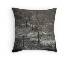 Controlled Burn Throw Pillow