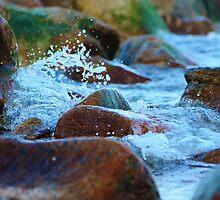 Coolum Beach, Queensland by Damien Scrivano