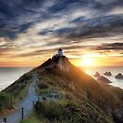Nugget Point Lighthouse by damienlee