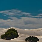 Dunes One by fotoWerner