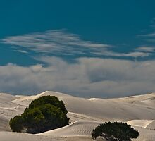 Dunes One by Werner Padarin
