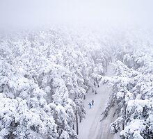 Two Skiers by Ari Salmela