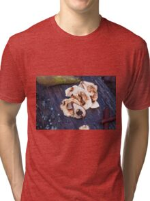 Dried apples and dried pears Tri-blend T-Shirt