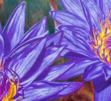 Water Lilies 9 Sticker
