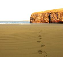 footprints in sand on empty beach on a beautiful winters day by morrbyte