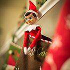 Elf on Our Shelf by Briar Richard