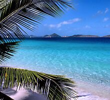 Soloman Beach Morning - St. John by Stephen Vecchiotti