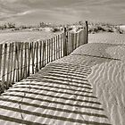 Shadows In The Sand by Monte Morton