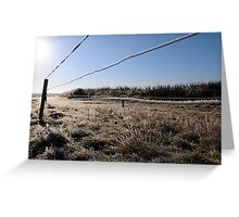 ice coated wire fence in a farm field Greeting Card