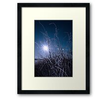 icy twigs and branches in snow against blue dawn Framed Print
