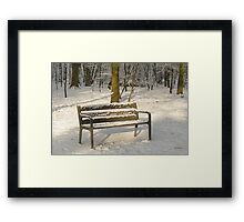 Merry Christmas - Waiting for you Framed Print