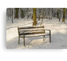 Merry Christmas - Waiting for you Canvas Print