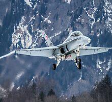 Swiss Air Force F-5E Tiger by AntonyMeadley
