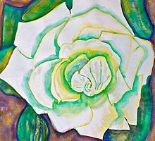 White Rose in Winter by Christine Chase Cooper