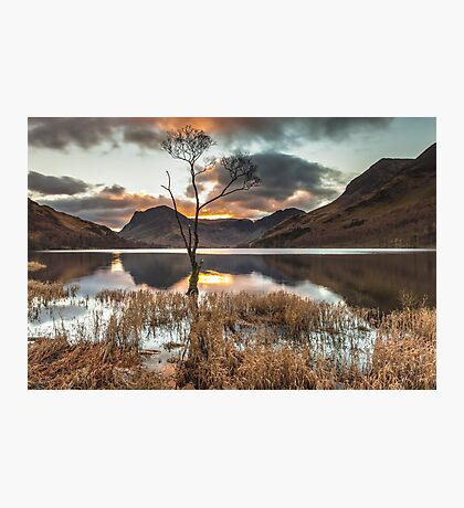 The Loner, Buttermere Photographic Print