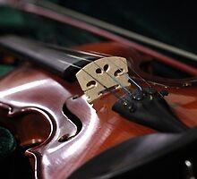 The Violin by AbigailJoy
