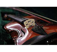 The Violin Photographic Print