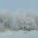 Beautiful Snow by Linda Miller Gesualdo