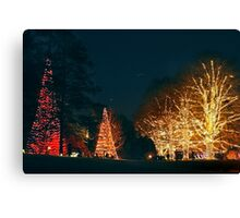 A Longwood Christmas Canvas Print