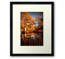 Autumnal View Framed Print