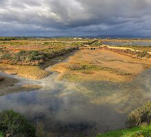 Ludo Nature Reserve by manateevoyager