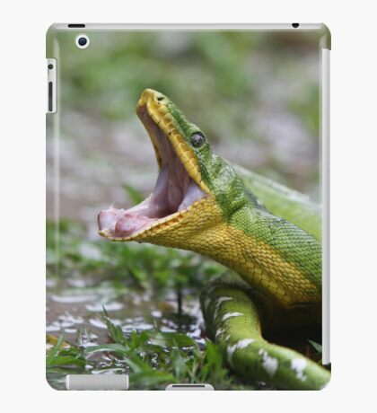 Emerald Tree Boa iPad Case/Skin