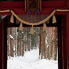 Togakushi Shrine Gate, Winter by Skye Hohmann