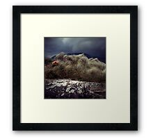 Life saving Point Framed Print