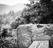 Nantahala Fence by Caroline Price