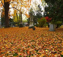 Buried with leaves by MarianBendeth