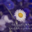 White Daisy - Quotation by Kiarn