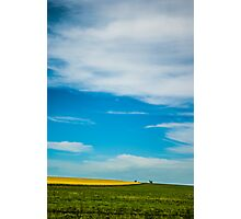 Canola in Big Sky Country Photographic Print
