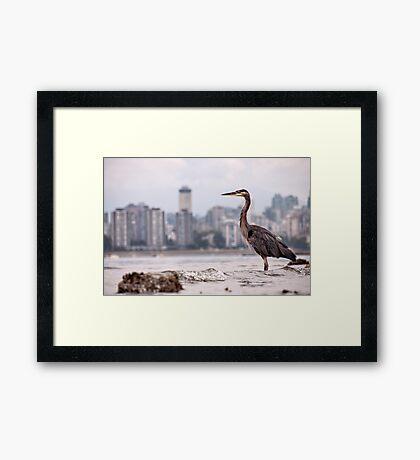 Guarding Vancouver Framed Print