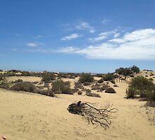 Sand Dunes of Maspalomas by Emma Harris