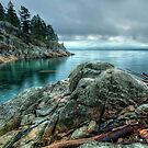 Banks of West Vancouver by James Wheeler
