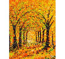 The Arches in Yellow by John E Metcalfe Photographic Print