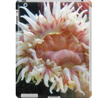 Anemone iPad Case/Skin