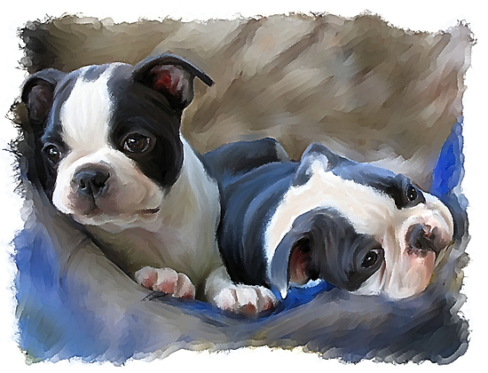 Moo Moo and Gracie by Cazzie Cathcart