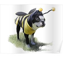 DJ the Bumble Bee Boston Poster