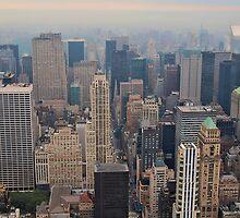 New York by Nicole  Markmann Nelson