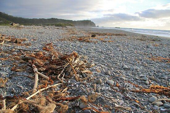 Punakaiki beach by jayview