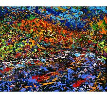 The River by Florida Artist John E Metcalfe Photographic Print