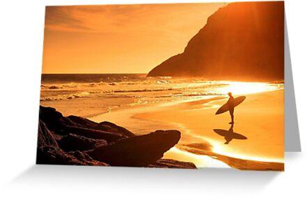 Amazing sunset on beach by Albert  Robbins